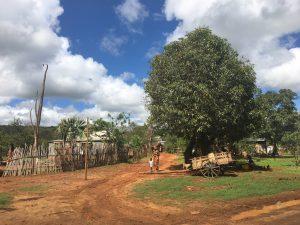 Madagascar MammaInViaggio