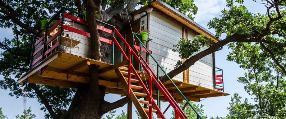 case sull'albero abruzzo